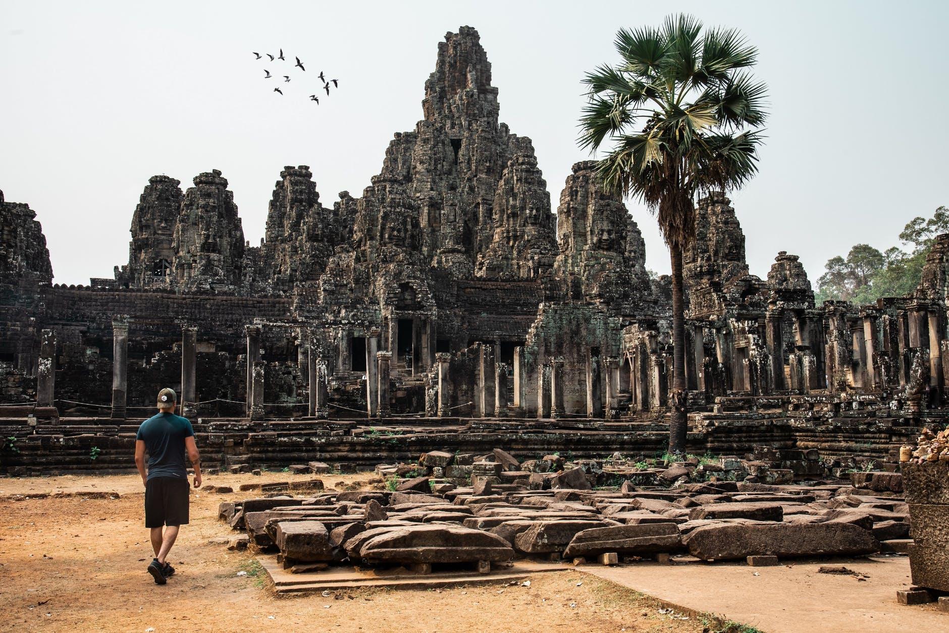 usi di garcinia cambogia