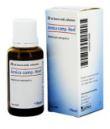 Heel Arnica Comp.-Heel Gocce 30ml - Farmacia 33