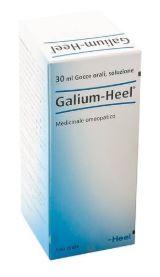 Heel Galium-Heel Medicinale Omeopatico Senza Glutine Gocce 30ml - Farmacia 33