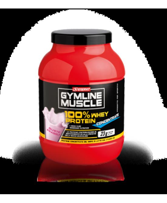 GYMLINE 100% WHEY CONCENTRATE FRAGOLA 700 G - Farmacia 33
