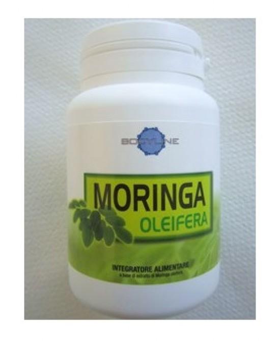 Moringa Oleifera 60cps - Zfarmacia