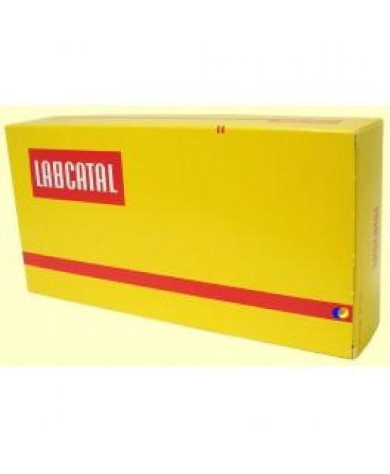 Labcatal Oligosol Litio Soluzione Orale 28 Fiale Da 2ml - Zfarmacia