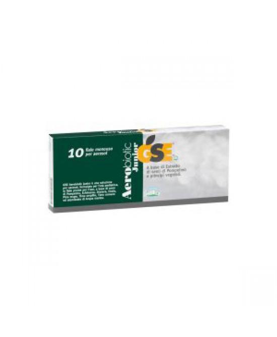 Gse Aerobiotic Junior Fiale per Aerosol Dispositivo Medico 10 Fiale Da 5 ml - Farmastar.it