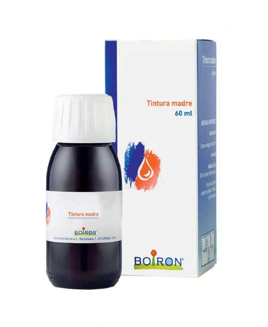 Gingko Biloba Tintura Madre 60 ml - Farmalilla