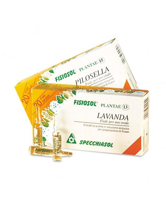 Specchiasol Fisiosol Plantae Lavanda Integratore Alimentare 20 Fiale - FARMAEMPORIO
