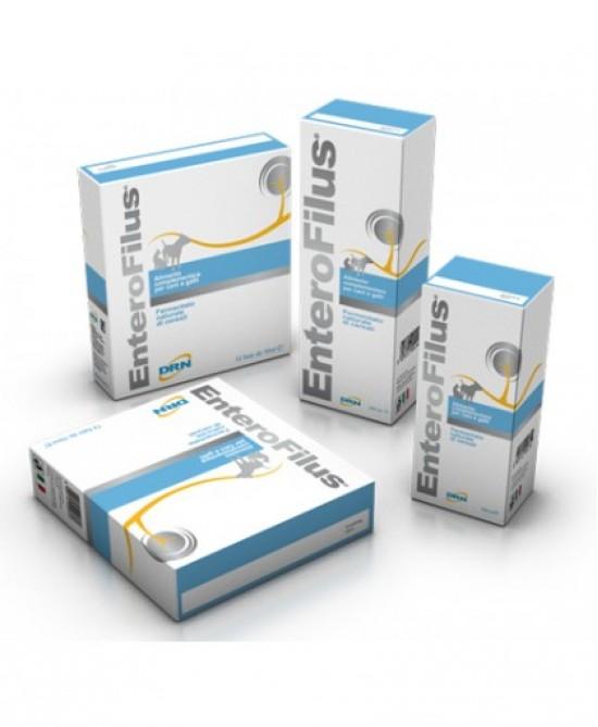 Drn Enterofilus 12 Fiale Da 100ml - farma-store.it