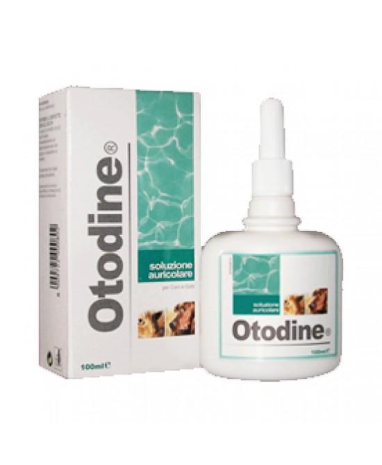 Otodine Detergente Liquido 100ml - La tua farmacia online