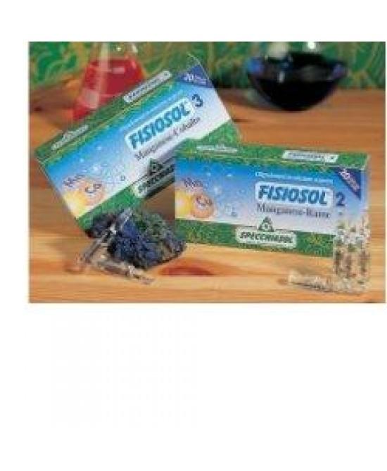 Fisiosol 6 Zn Cu 20f - FARMAEMPORIO