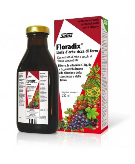 Salus Floradix Linfa D'Erbe Ricca Di Ferro Integratore Alimentare 250ml - La tua farmacia online