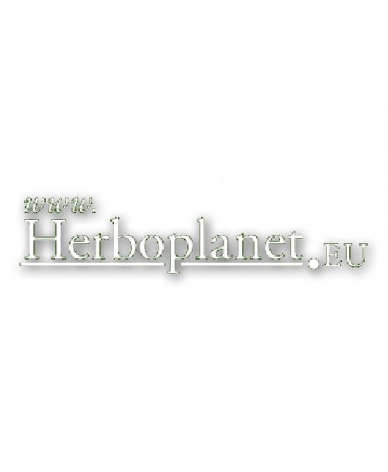 Pilosella Compositum Gtt 100ml - Antica Farmacia Del Lago