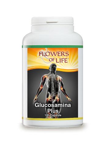 GLUCOSAMINA PLUS 100 CAPSULE FLOWERS OF LIFE - FARMAEMPORIO